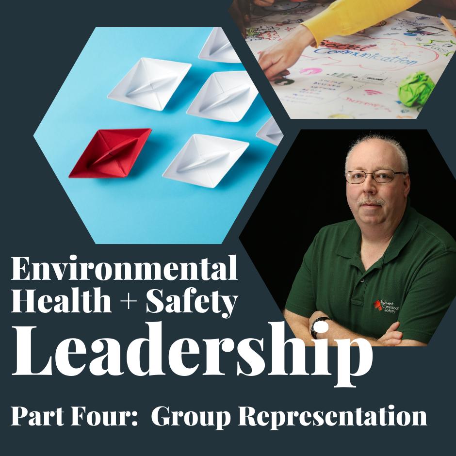 Group Representation In EHS Leadership