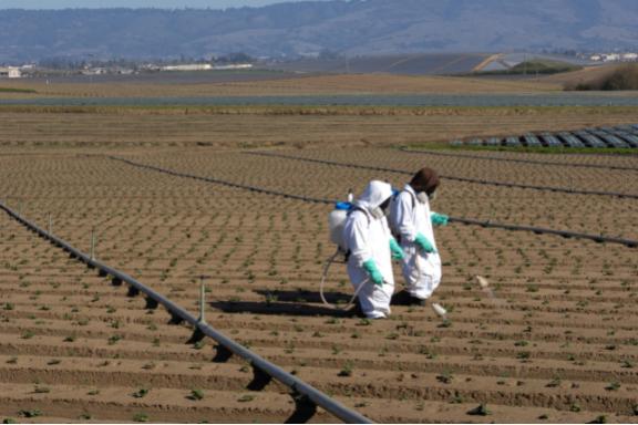 Agriculture spray